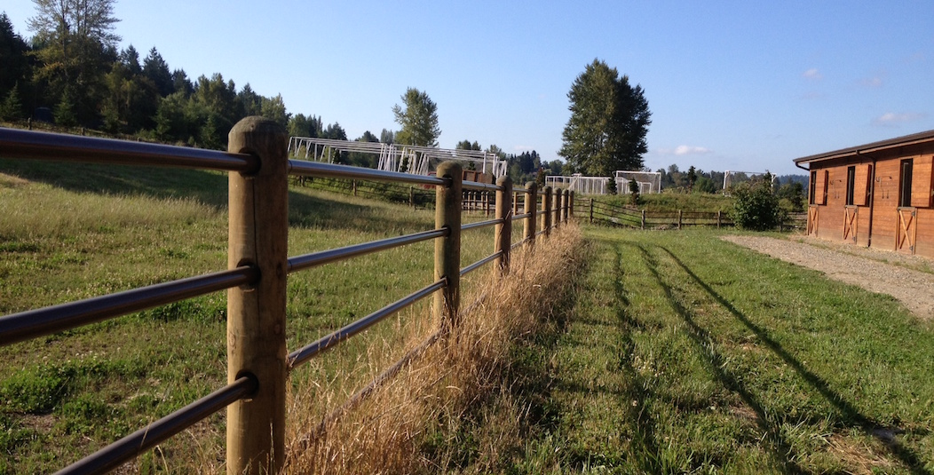 totally enclosed fence surrounding willowcrest stables